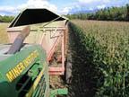 Miner Institute Corn HarvestingTractor722